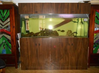 eladó akvárium, felszereléssel