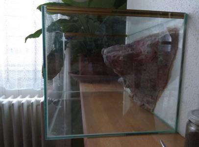 Hátterezett teknősterrárium eladó