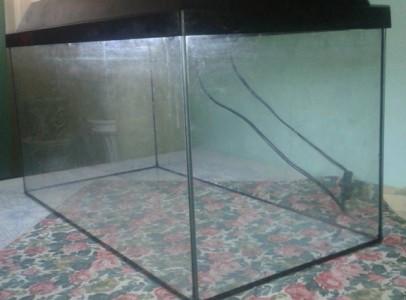 Eladó egy 54L-es akvárium