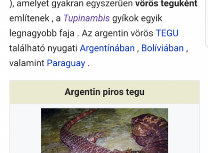 Argentin tegu