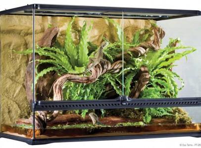 ExoTerra Glass Terrarium + ExoTerra Compact Dual