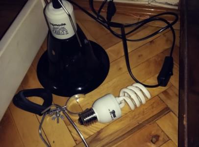 Terráriumi lámpabúra és UV lámpa