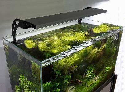 Akvárium LED világítás bármilyen méretben
