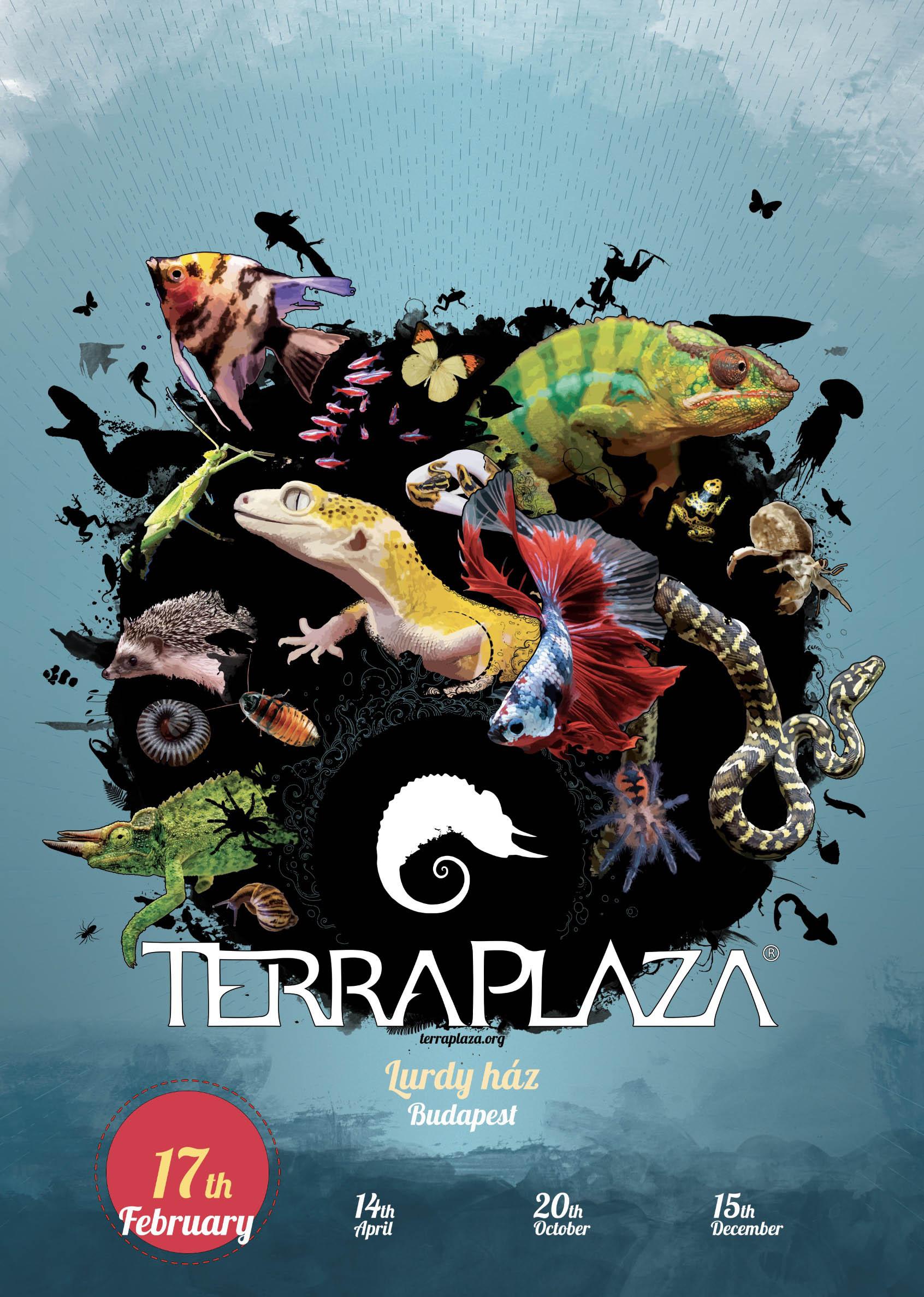 TerraPlaza 2019 februar
