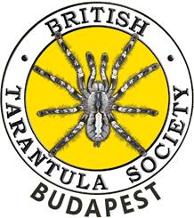 British Tarantula Society Budapest
