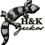 Hkgeckos